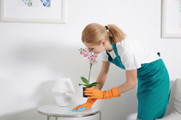 Montreal Maids House Cleaners